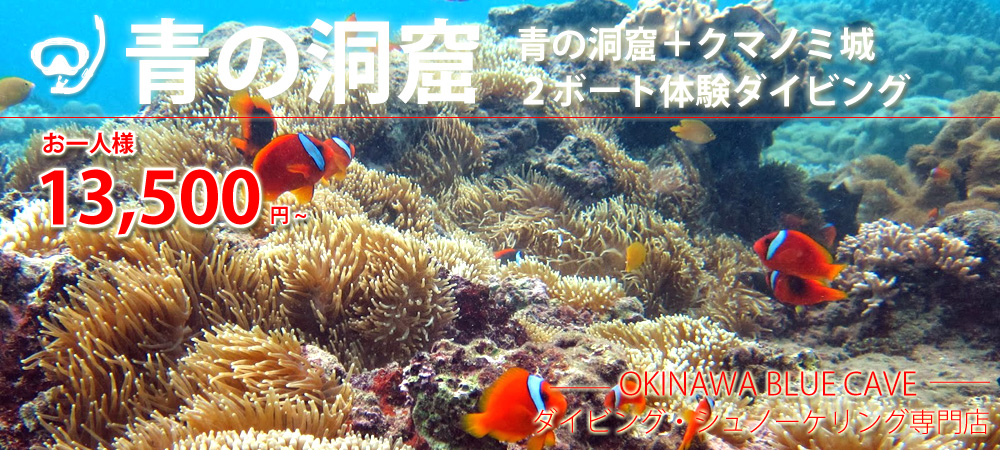沖縄ダイビング(青の洞窟+クマノミ城2ボート体験ダイビング)お一人様13.500円~
