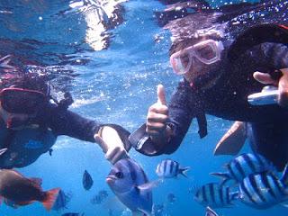 ここからは、ツアー風景の紹介です!! シュノーケリングチームは、水面から青の洞窟や沖縄の海を堪能して頂きます!!