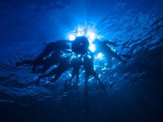 透明度がとても高く水中から見ると天気もよくいい感じのシルエット写真が撮れましたよ♪